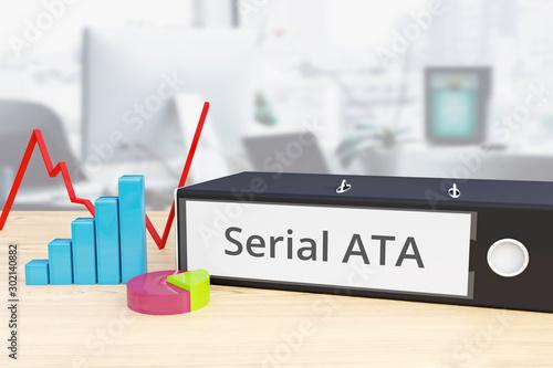 Serial ATA – Finance/Economy Canvas Print