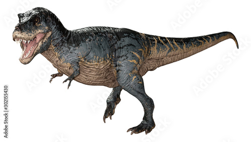 Fotografie, Obraz  3D Rendering Tyrannosaurus Rex on White