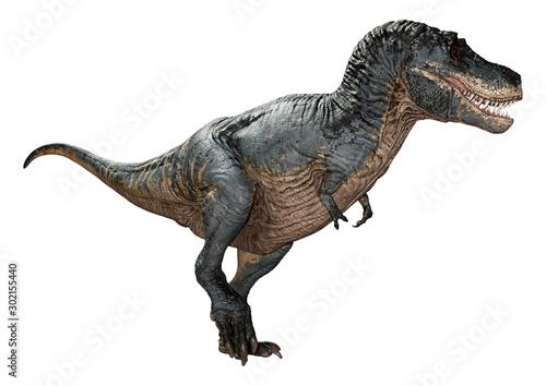 Fotografie, Tablou  3D Rendering Tyrannosaurus Rex on White