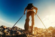 Hiker Goes With Trekking Poles...