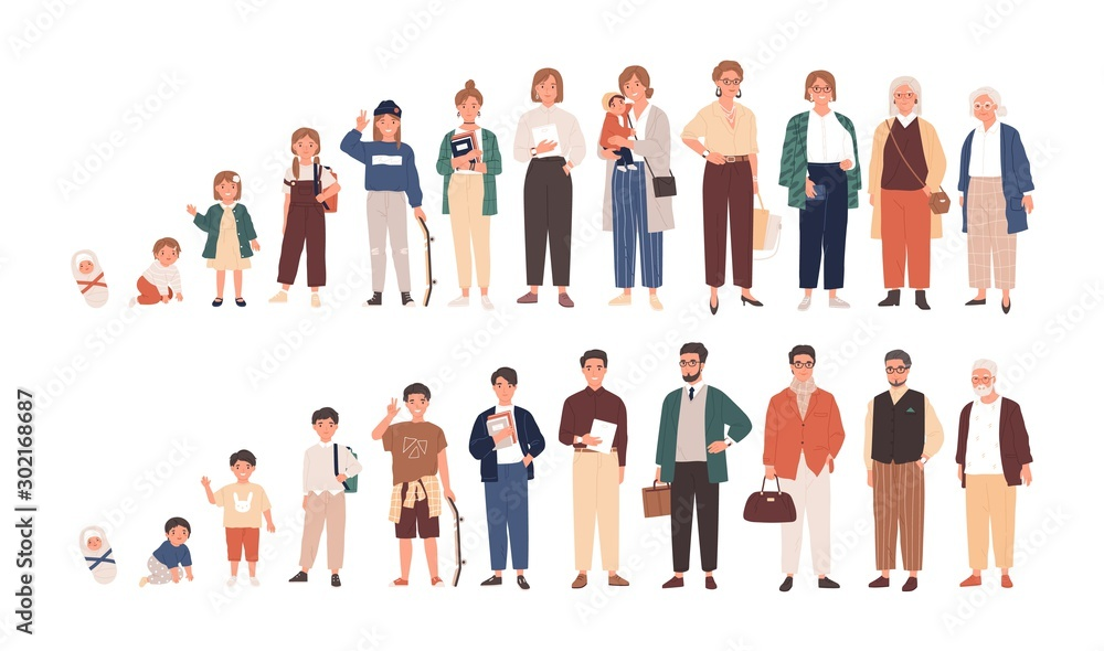 Fototapeta Human life cycles vector illustration. Male and female growing up and aging. Men and women of different ages cartoon characters. Children, adult and old people isolated on white background.