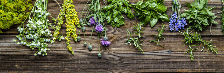 Collection of herbs, fresh garden herb on wooden background