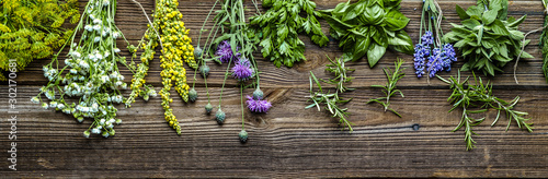 Fotografia Collection of herbs, fresh garden herb on wooden background