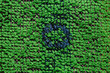 texture green with a blue circle in the center