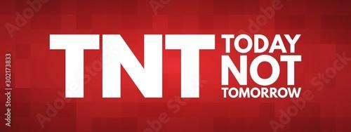 Vászonkép TNT - Today Not Tomorrow acronym, business concept background