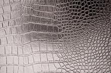Vintage Crocodile Skin Texture