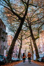 Autumn In Amsterdam, Couple Wa...