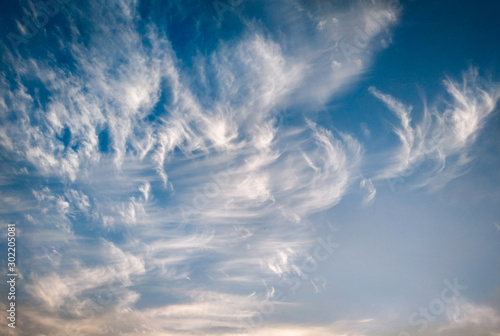 cloudscape with white altocumulus clouds at evening Wallpaper Mural
