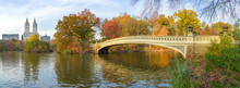 New York City Central Park Fall Foliage At Bow Bridge Pond