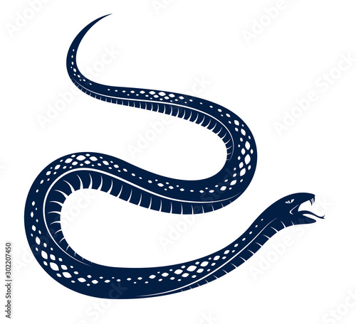 Fényképezés Venomous snake vintage tattoo, vector drawing of aggressive predator reptile, deadly poisoned serpent symbol, vintage style illustration