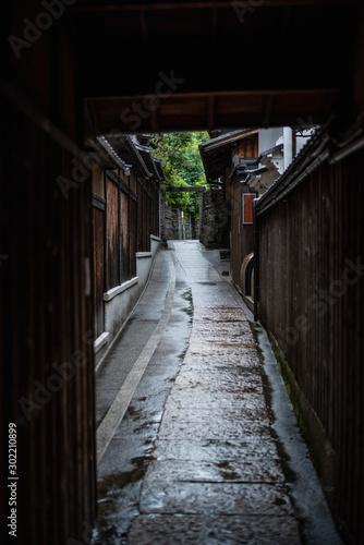 京都 雨あがり Wallpaper Mural