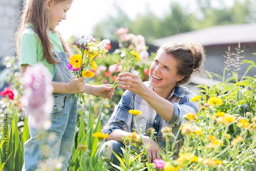 Mother and daughter picking pretty colourful flowers in their organic garden Wallpaper Mural
