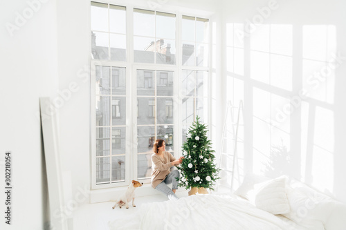 Happy young brunette woman and domestic animal decorate New Year tree at home Canvas Print