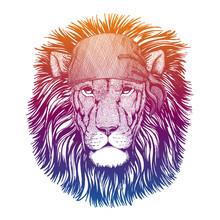 Lion. Wild Pirate Or Biker. Ve...