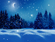 canvas print picture - Winter  background .Merry Christmas and happy New Year greeting card with copy-space. Christmas night landscape with moon  and fir trees