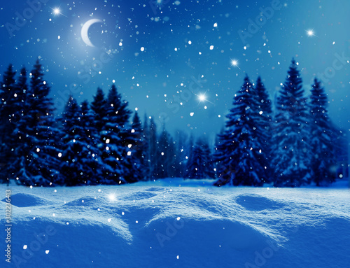 Obraz Winter  background .Merry Christmas and happy New Year greeting card with copy-space. Christmas night landscape with moon  and fir trees - fototapety do salonu