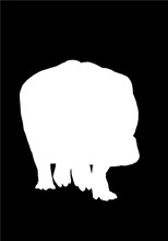 Graphical Hippo Silhouette Iso...