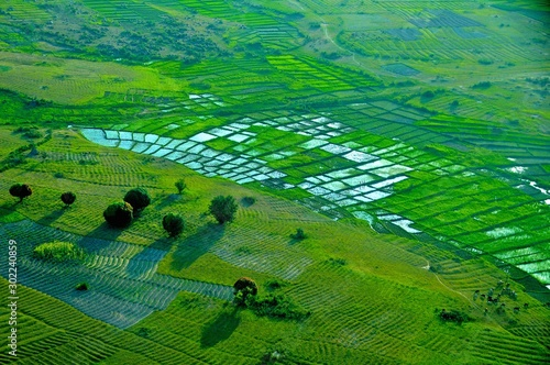 Foto op Plexiglas Groene Arusha city