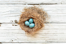 Real Birds Nest Over A Rustic Wooden White Table With Small Speckled Robin Blue Eggs. Selective Focus On Eggs With Slight Blurred Background.