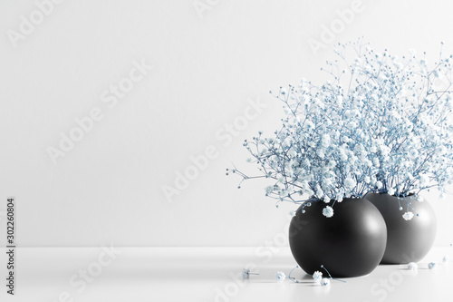 Obraz Home interior floral decor. Elegant floral soft composition. Beautiful blue flowers in black vase on white wall background. - fototapety do salonu