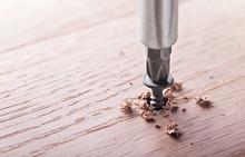 Screwdriver Screw In A Wood Oa...