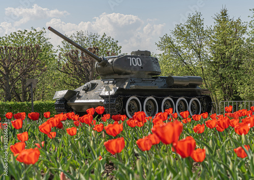 Fotomural  Victory tank T-34-85 in the Park among tulips against the sky