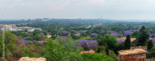 Aerial view of Johannesburg with green parks and Jacaranda trees, South Africa.