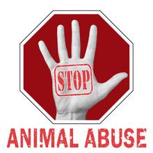 Stop Animal Abuse Conceptual I...