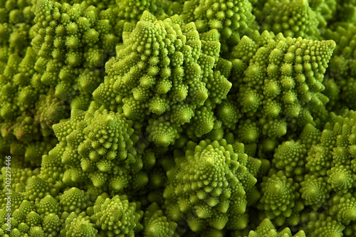 Romanesco broccoli or Roman cauliflower, close up shot from above, texture detail of the healthy vegetable Brassica oleracea, a variation of cauliflower. macro photo - 302279446