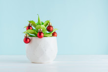 Succulent Plant Decorated With Christmas Balls On Blue Background