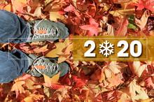 Felicitacion Navidad Año Nuevo 2020 Hojas -as19