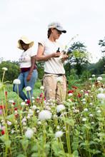 Two Young Women Cut Flowers In A Field
