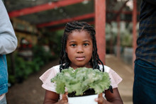 Young Black Girl With Long Braids Holding Bedding Plant At Nursery