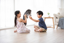 Happy Chinese Sibling Playing With Dog In Living Room