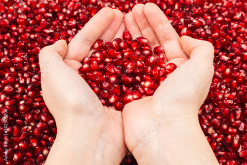 Red juicy pomegranate seeds in woman hand. - 302305208