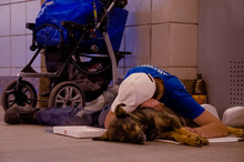 An Old Homeless Man Lies In A Crosswalk Hugging A Dog To Keep Warm