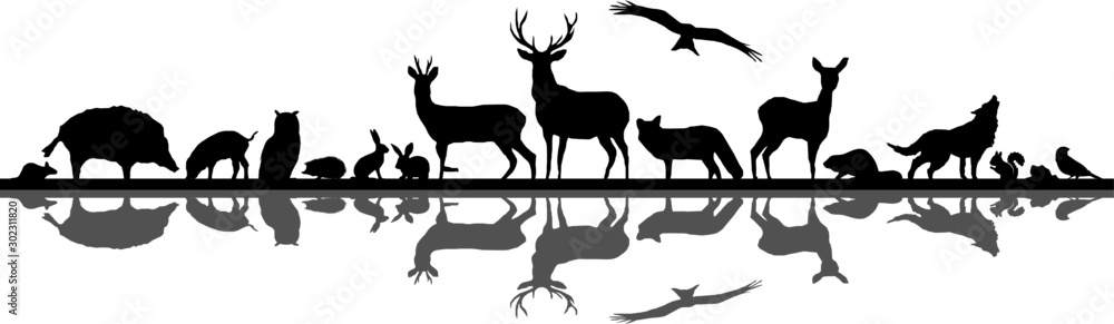 Fototapety, obrazy: Wild Animals Forest Landscape Vector Silhouette