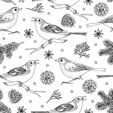 Elegant Hand Drawn Christmas Seamless Pattern With Birds, Fir Tree Branches, Star Anise And Pine Cones. Winter Vintage Engraving Design For Textile, Scrabooking. Vector Illustration Background.