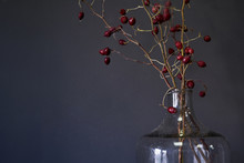 Large Glass Bottle With Branches Of Dry Red Rosehip On Wood Table, Selective Focus