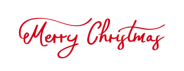Hand drawn Merry Christmas lettering. Vector illustration.