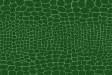 Vector Illustration Of Crocodile Skin Pattern. Animal Print