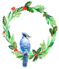 Christmas Wreath Blue Jay On A Branch
