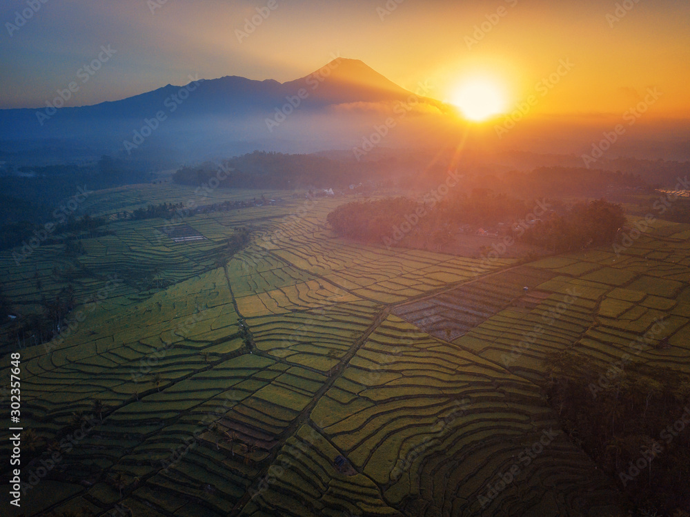 Fototapety, obrazy: Aerial photo of rice terrace field in Indonesia which was taken in the morning / afternoon and dawn / dusk