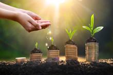 Money Growth Saving Money. Upp...