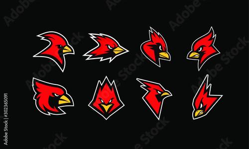 Foto set of cardinal bird logo icon design vector