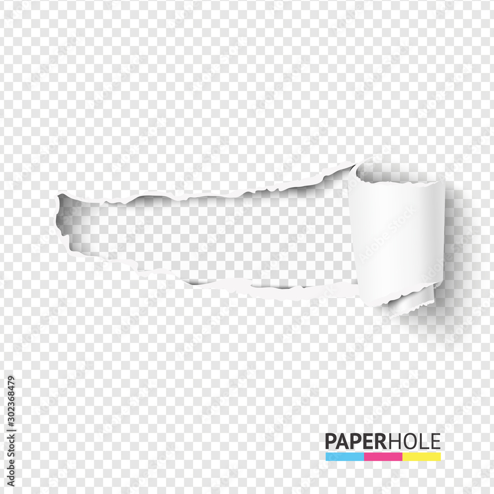 Fototapeta Vector blank curled tear paper piece into a scroll with torn edges of hole and shadows on a transparent background for sale promo empty banner revealing some message.