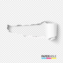 Vector Blank Curled Tear Paper...