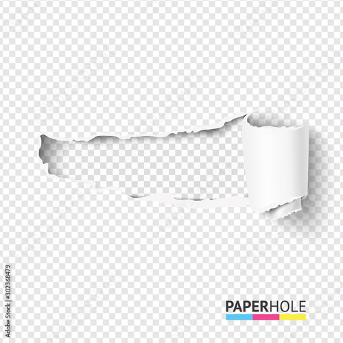 Fotografía Vector blank curled tear paper piece into a scroll with torn edges of hole and shadows on a transparent background for sale promo empty banner revealing some message