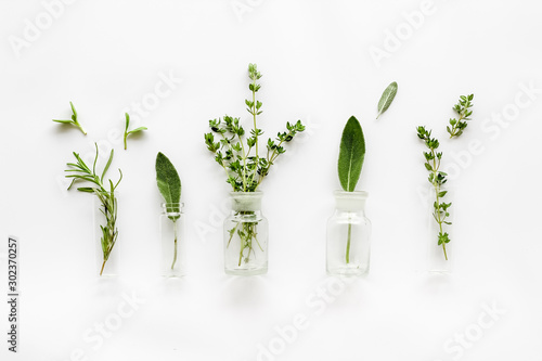 Herbal formulations for health care on white background top view pattern Canvas Print