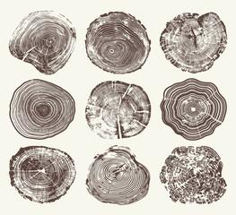 Wood Tree Rings Vector Set